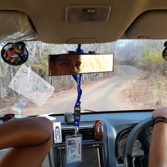 jeep reis
