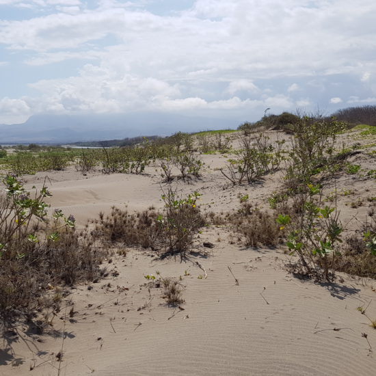 strand Indonesia