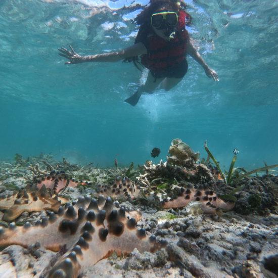 snorkelen vakantie