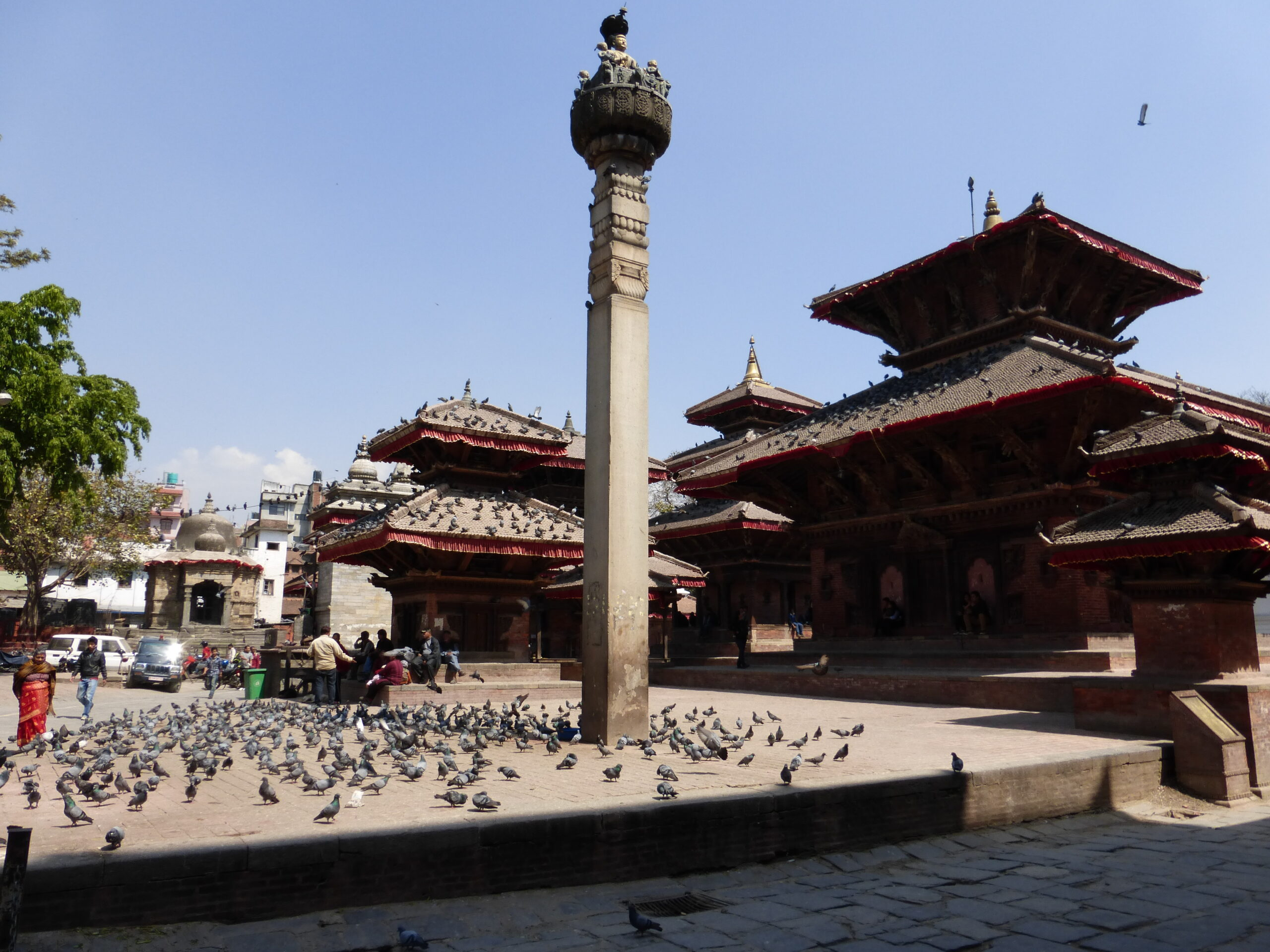 reis nepal