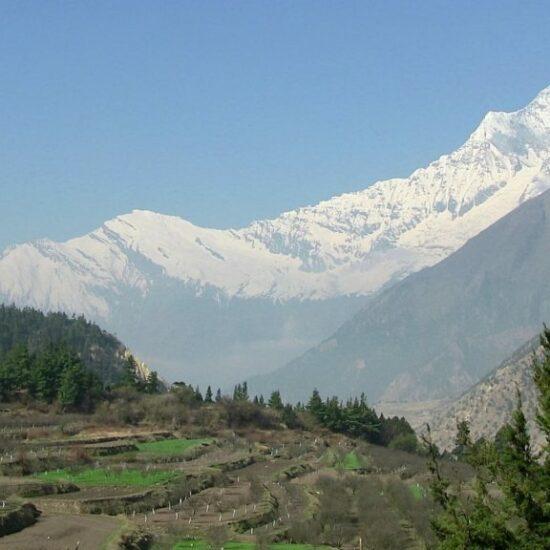trek Dhaularigi