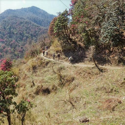 poon hill trekking nepal
