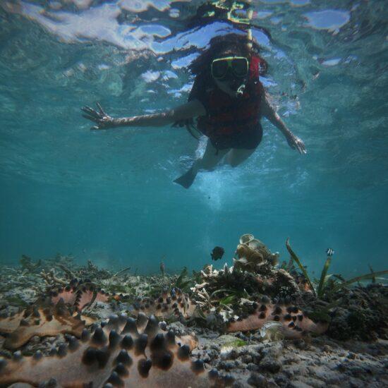individuele reis Indonesië