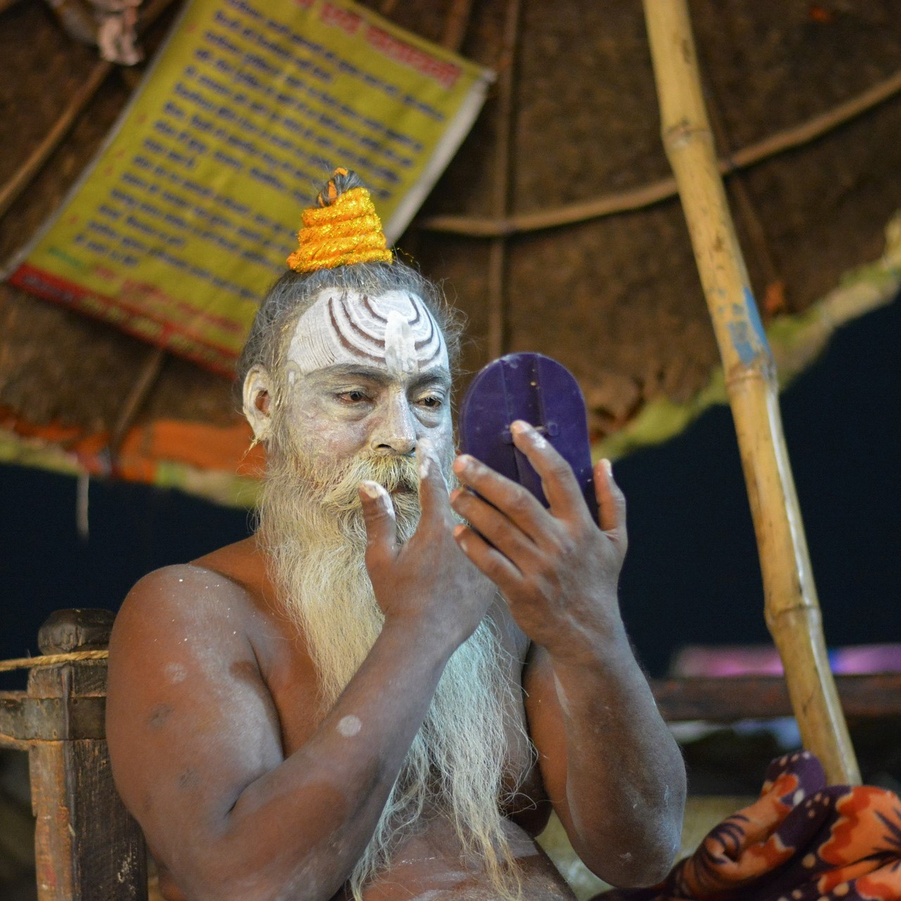 individuele reis noord india