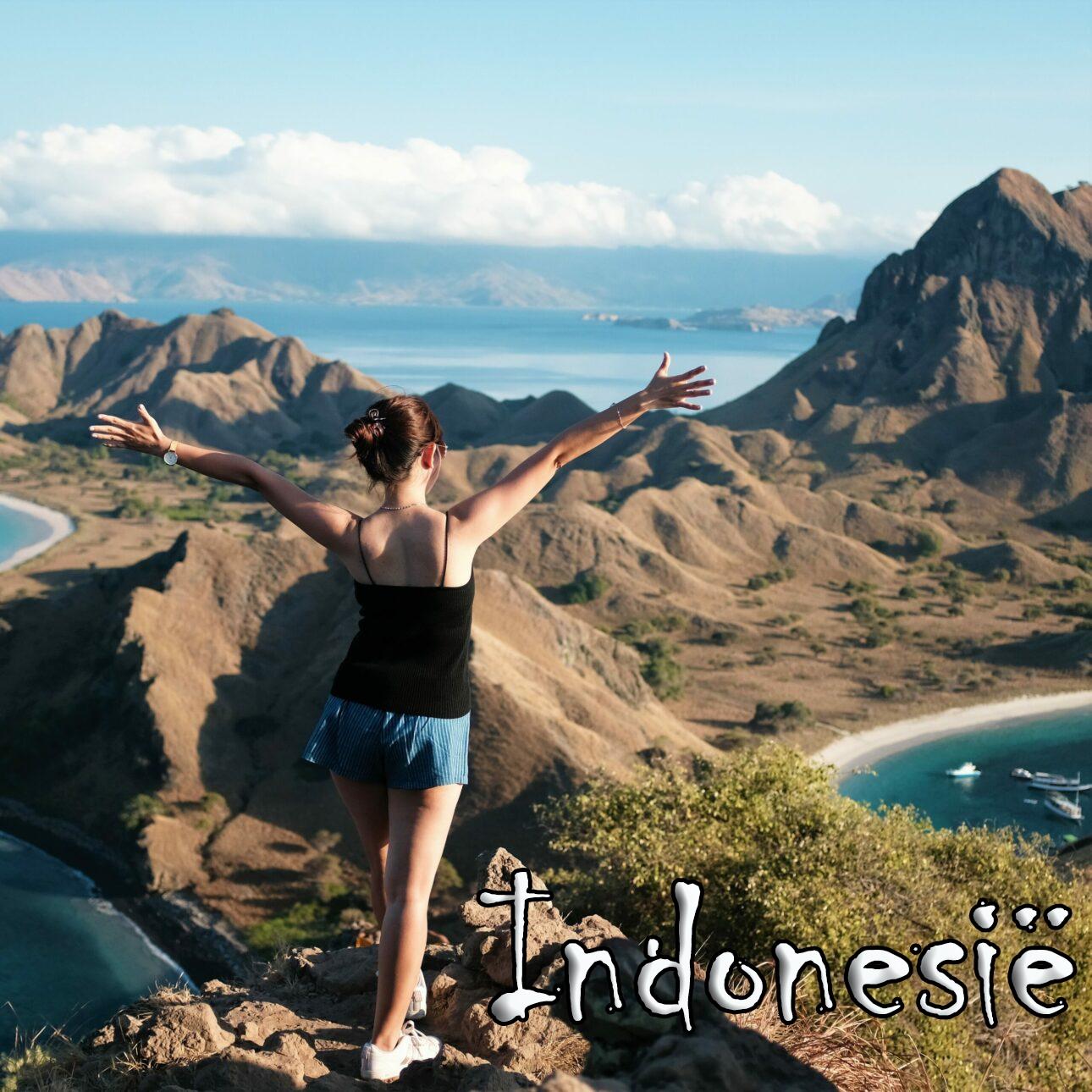 Indonesië reizen